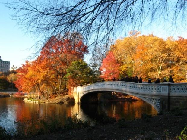 outono-central-park-small